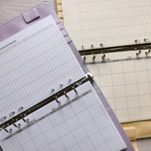 Сменные бланки для ежедневников формата А5 (21x14 см)